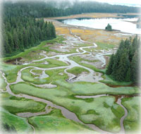EPIC SOUTHEAST ALASKA SHOREZONE COASTAL MAPPING PROJECT COMPLETED