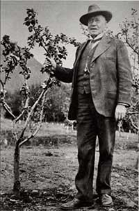 jpg Charles Georgeson stands next to an apple tree growing in Sitka