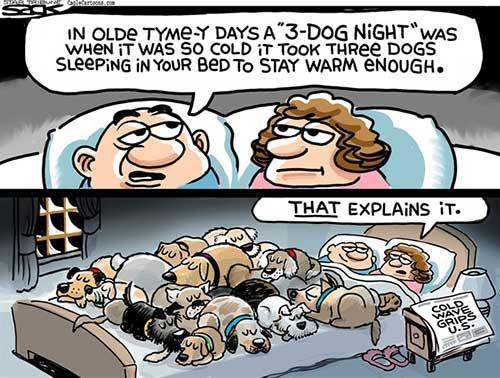 jpg Political Cartoon: Hot Dogs