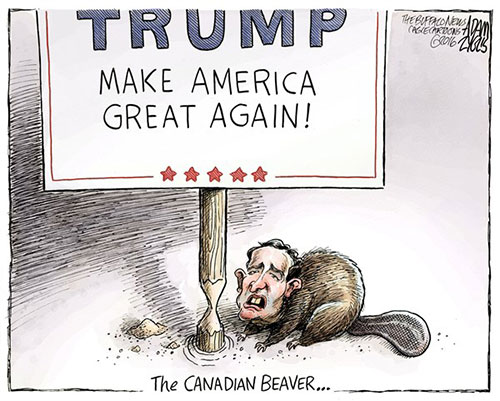 jpg Editorial Cartoon: Cruz wins Iowa