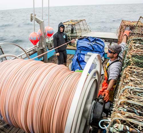 jpg Dangerous fishing may be endangered