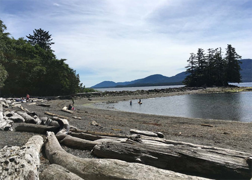 jpg 2017 Report for Bacteria at Coastal Areas in Ketchikan Released