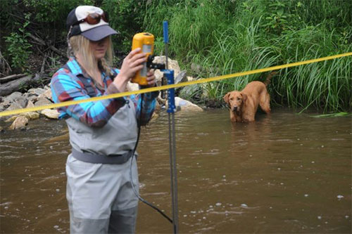 jpg Deanna Klobucar measures the flow in Cripple Creek, which feeds into the lower Chena River just west of Fairbanks, while Trout the dog supervises.