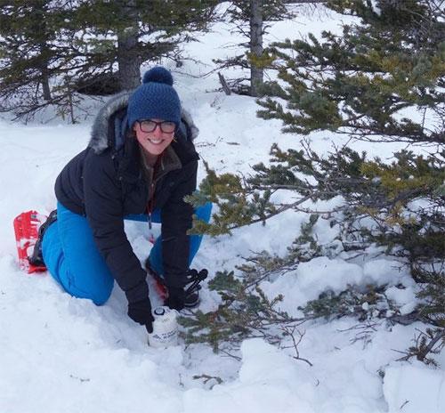 jpg Elizabeth Berg of the University of Utah installs a seismometer on the Denali Fault near Cantwell.