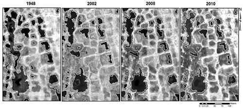jpg Satellite images showing how Arctic ponds have slowly decreased in size since 1948.