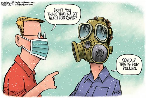 jpg Political Cartoon: Covid Pollen Mask