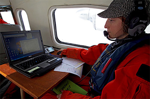 jpg Marine mammal scientist Amelia Brower surveying gray whales from the air.