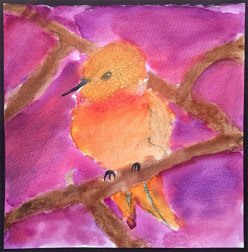 jpg Honorable Mention: