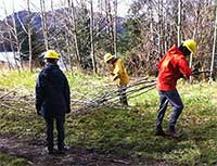 Volunteers on Prince of Wales Island work and learn