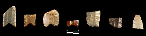 jpg Spear points with fluted edges prove that early inhabitants traveled all over North America.