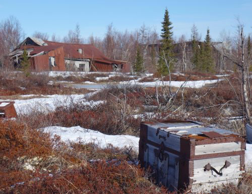 jpg A travel trunk sits on the tundra in the ghost town of Iditarod.