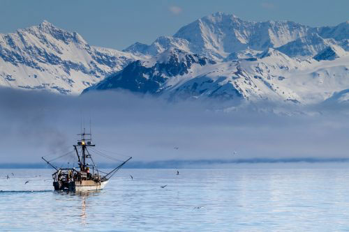 Alaska fishermen are becoming more specialized