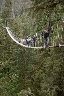 Alaska Canopy Adventure and Wildlife Expedition & SitNews - New Ketchikan Canopy Adventure Opens This Week by M.C. ...