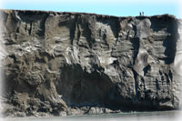 Far north permafrost cliff is one of a kind