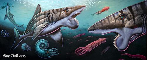 jpg Rare buzz saw shark fossil returns to Alaska