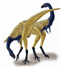 Beaked, bird-like dinosaur tells story of finger evolution