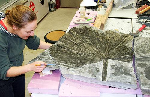 jpg Finding fossils in Alaska