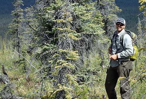 jpg Wilderness guide Garrett Jones of Fairbanks next to a spruce tree hosting a robin's nest at eye level.