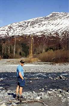 jpg Ned Rozell views the trans-Alaska pipeline route near Valdez in 1997.