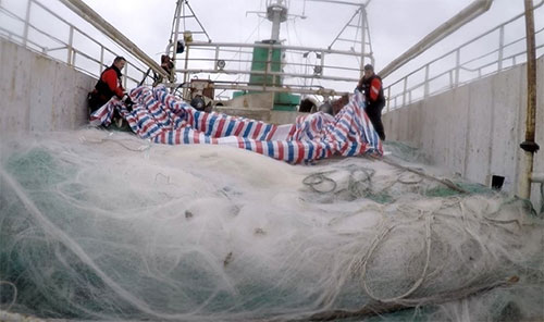 jpg USCGC Alex Haley (WMEC 39) and People's Republic of China Coast Guard crew members uncover an approximately 5.6-mile drift net onboard the fishing vessel Run Da during a joint boarding of the vessel in the North Pacific Ocean, 860 miles east of Hokkaido, Japan, June 16, 2018.
