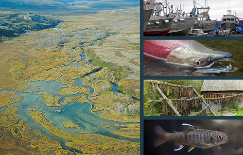 jpg EPA releases new proposal to protect Bristol Bay fisheries from impacts posed by Pebble Mine