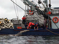 SCG Assists Fishing Vessel Taking on Water & Conducts 2 Medevacs in Southeast Alaska