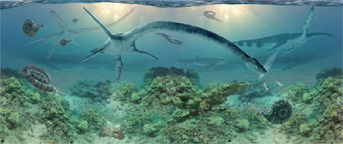 jpg First elasmosaur specimen excavated in Alaska