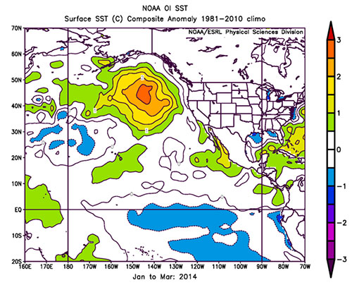 jpg El Nino patterns contributed to long-lived marine heatwave in North Pacific