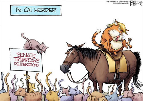 jpg Editorial Cartoon: Cat Herder