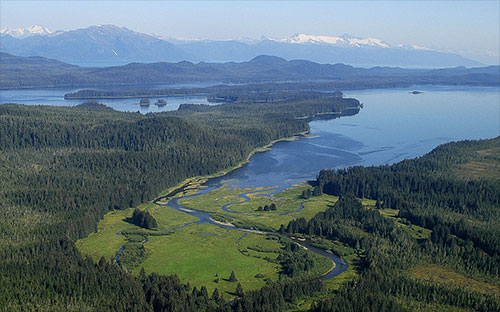 jpg Tongass National Forest: King Salmon River Delta