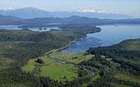 Are the Tongass Timber Wars Finally Over? Biden Administration Moves to Protect Roadless Areas in Tongass National Forest