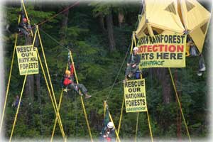 photo Greenpeace activists - click here...