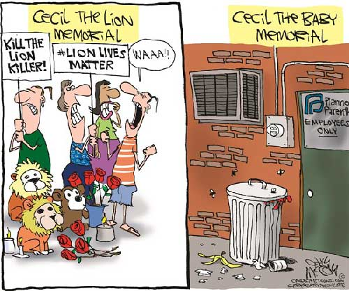 jpg Political Cartoons: Cecil vs Baby