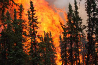 Large wildfires a factor in climate equation