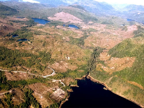 jpg Recent logging - nearly 4,000 acres - at Leask Lakes, Revilla Island by the Alaska Mental Health Trust.