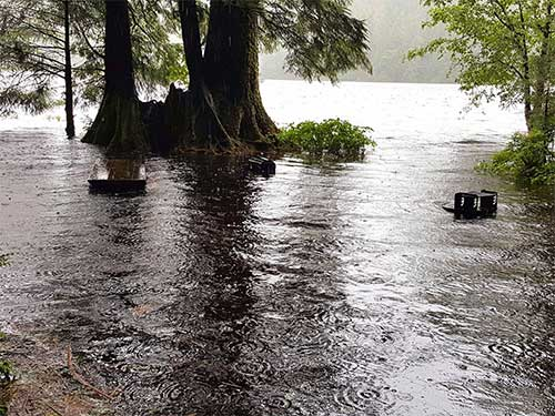 jpg Ketchikan District Ranger closes campground in Ward Lake Recreation Area due to flooding