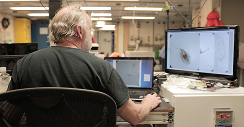 jpg Russ Hopcroft looks closer at a photo of a copepod that he took through his microscope.