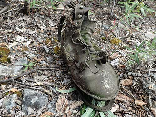 jpg An old boot at the townsite of Franklin, Alaska, which was alive with people from 1887 to 1948.