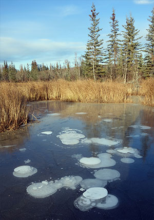 jpg 'Abrupt thaw' of permafrost beneath lakes could significantly affect climate change models