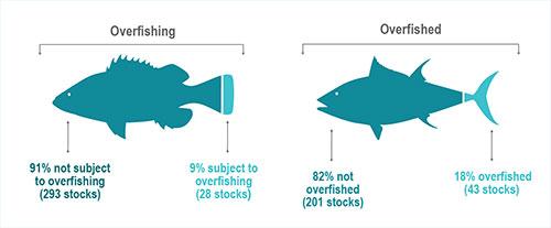 jpg Status of U.S. fish stocks in 2018