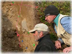 Digging for clues on the Denali Fault