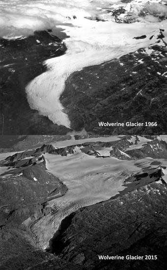 jpg Repeat oblique photographs of Wolverine glacier in Alaska. 1966 image  and 2015 image