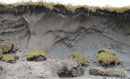 jpg Defrosting the world's freezer: Thawing permafrost