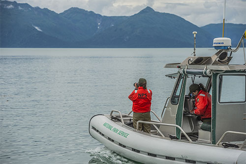 jpg Biologists Christine Gabriele and Janet Neilson carefully approach humpback whales in Glacier Bay National Park aboard the R/V Sand Lance to photograph and observe whales for population monitoring purposes.