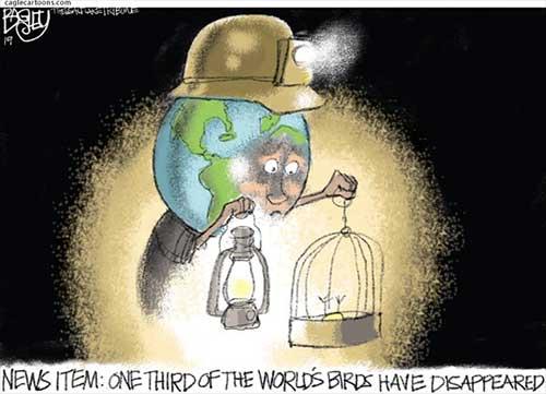 jpg Political Cartoon: Missing Birds