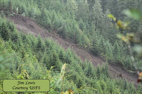 jpg Brown Mountain Road landslide