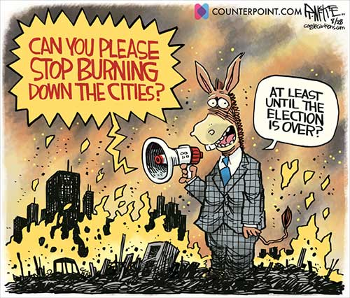 jpg Political Cartoon: Burning Cities