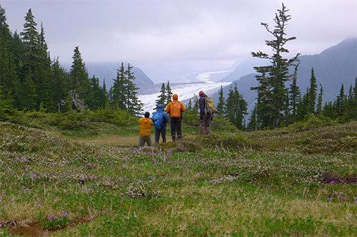 jpg USGS research team pauses to take in the view of South Crillon Glacier from a study site along the Fairweather Fault in southeast Alaska.