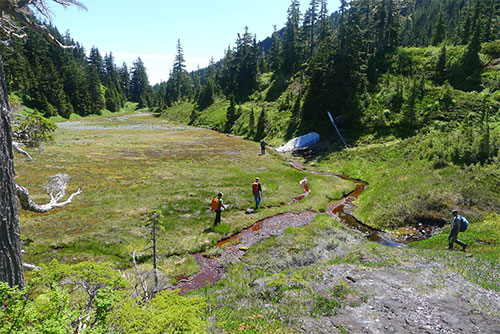 jpg A team of USGS scientists spent 10 days in the wilderness investigating the Fairweather Fault