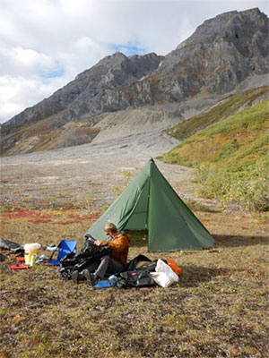 jpg Wrangell-St. Elias National Park geologist Mike Loso works at a base camp for a fossil search. Behind him rise the mountains where an ichthyosaur was rediscovered in August.